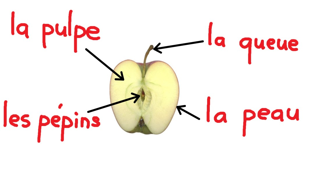 pomme ouverte