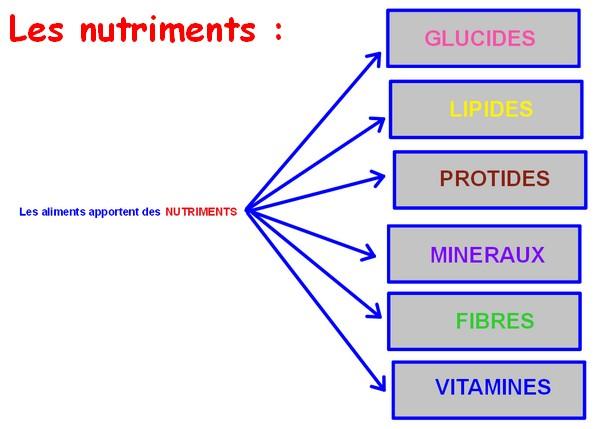 alimentation nutriments