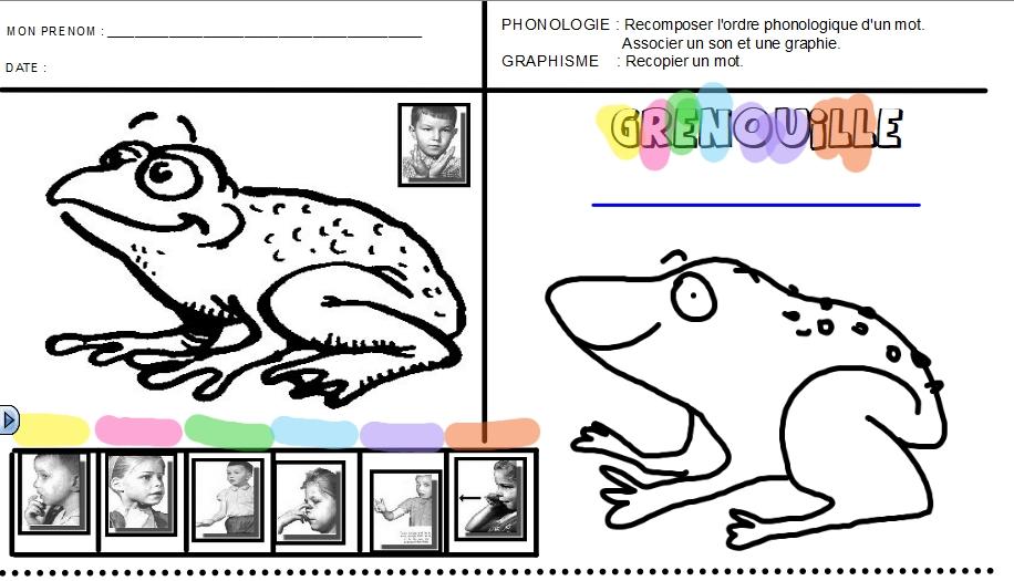 GS grenouille fait
